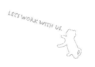 インターンシップの猫